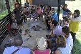 Banyoles: del neolític a l'edat mitjana