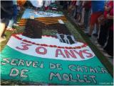 Servei de Català de Mollet (1987-2017) Fem trenta anys!