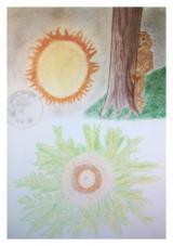 Eguzkilorea, la flor del sol