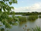 Visita guiada a l'estany d'Ivars i Vila-sana dels alumnes d'Intermedi de Mollerussa