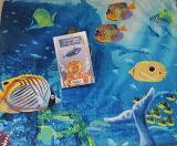76a sessió del Club de lectura fàcil a Gavà: <em>Vint mil llegües de viatge submarí</em>