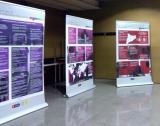 Exposició Mirades i veus del català