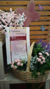 Per Sant Jordi, Palamós, Mots i flors als comerços