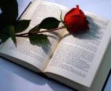 Et recomanem un llibre?