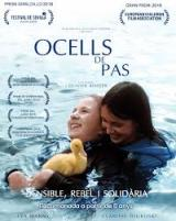 Cinema familiar en català a Sant Cugat: <em>Ocells de pas</em>