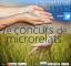 Finalitza el període de participació del concurs de microrelats