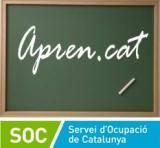 Acaben a les Terres de l'Ebre els cursos de català per a persones aturades del programa Aprèn.cat