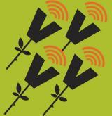 Actes de Sant Jordi al CNL Eramprunyà