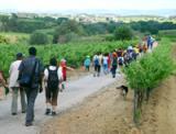 El CNL de l'Alt Penedès i el Garraf celebra el final de curs amb una caminada entre Sant Pau d'Ordal i Sant Sebastià dels Gorgs