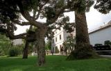 El curs de català de Calafell per a dones magribines es tanca als jardins de Cal Bolavà